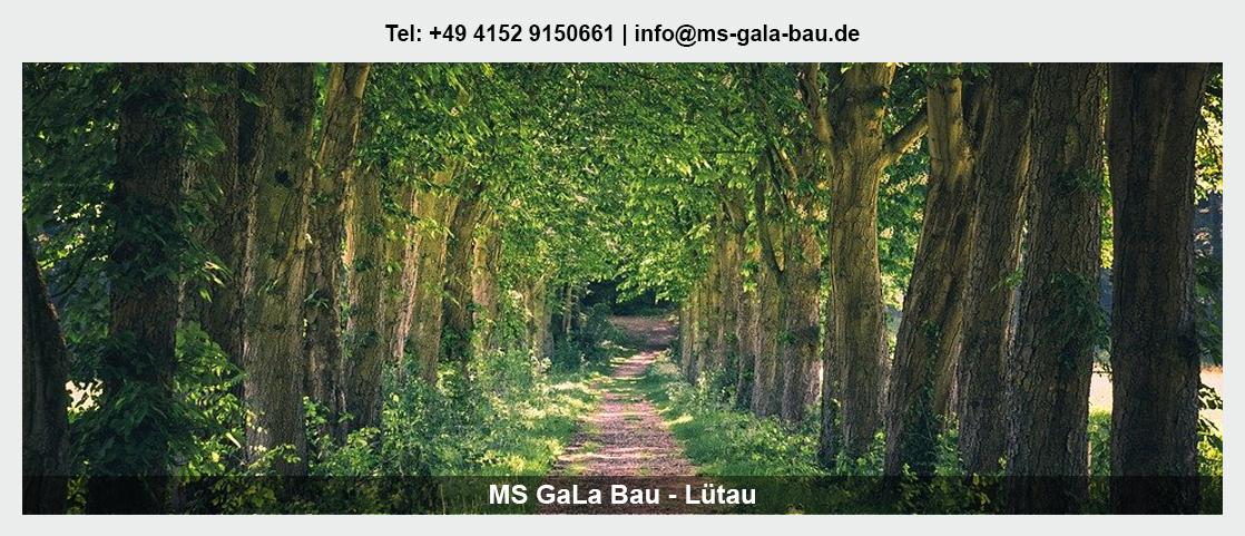 Garten- und Landschaftsbau in Lübtheen - Martin Schwerdtfeger: Baumpflege, Erdbau/Tiefbau