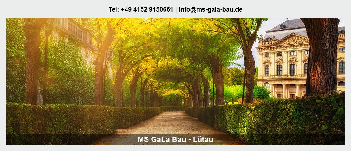 Garten- und Landschaftsbau Mölln - Martin Schwerdtfeger: Baumpflege, Erdbau/Tiefbau