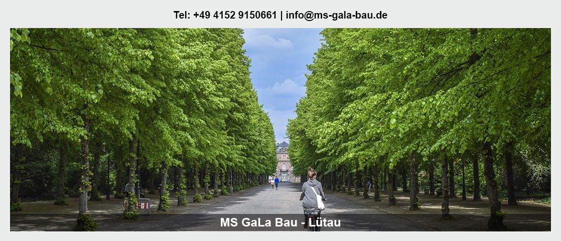 Garten- und Landschaftsbau in Lützow - Martin Schwerdtfeger: Baumpflege, Erdbau/Tiefbau